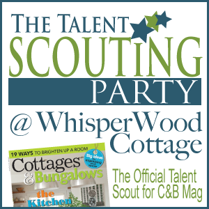 DIY Talent Scouting Party