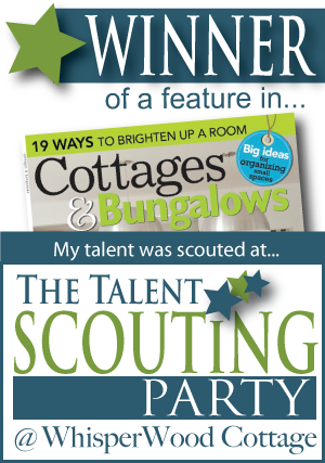 Talent Scout Winner