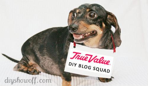 True Value DIY Blog Squad