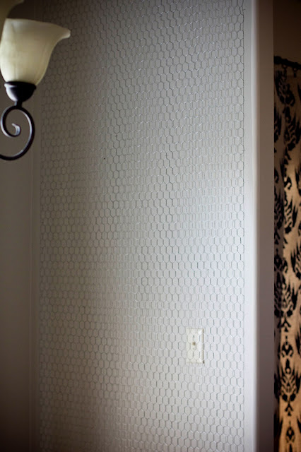 chicken wire wall after