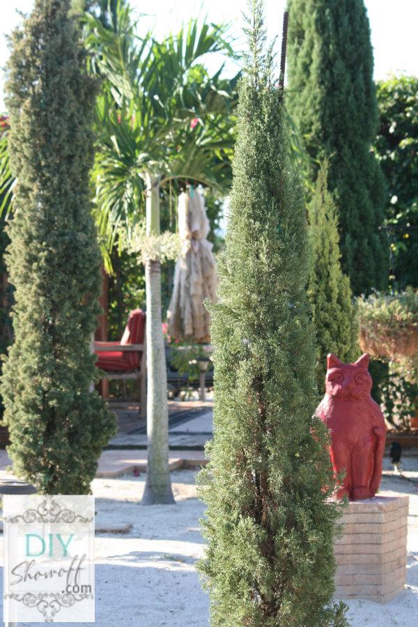 red cat statue