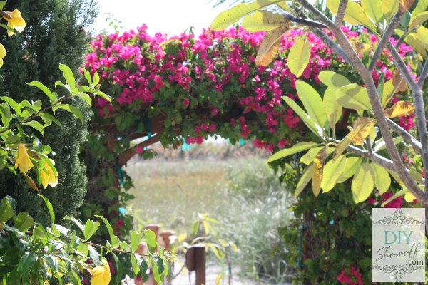 flower arbor