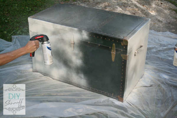 white basecoat on old trunk