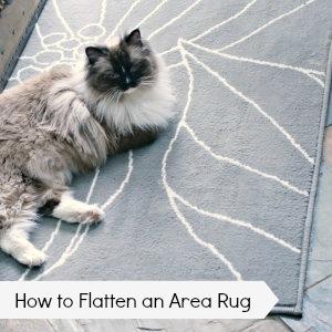 How to Flatten an Area Rug