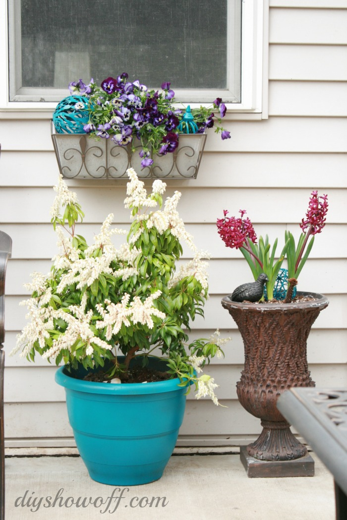 patio-flowers