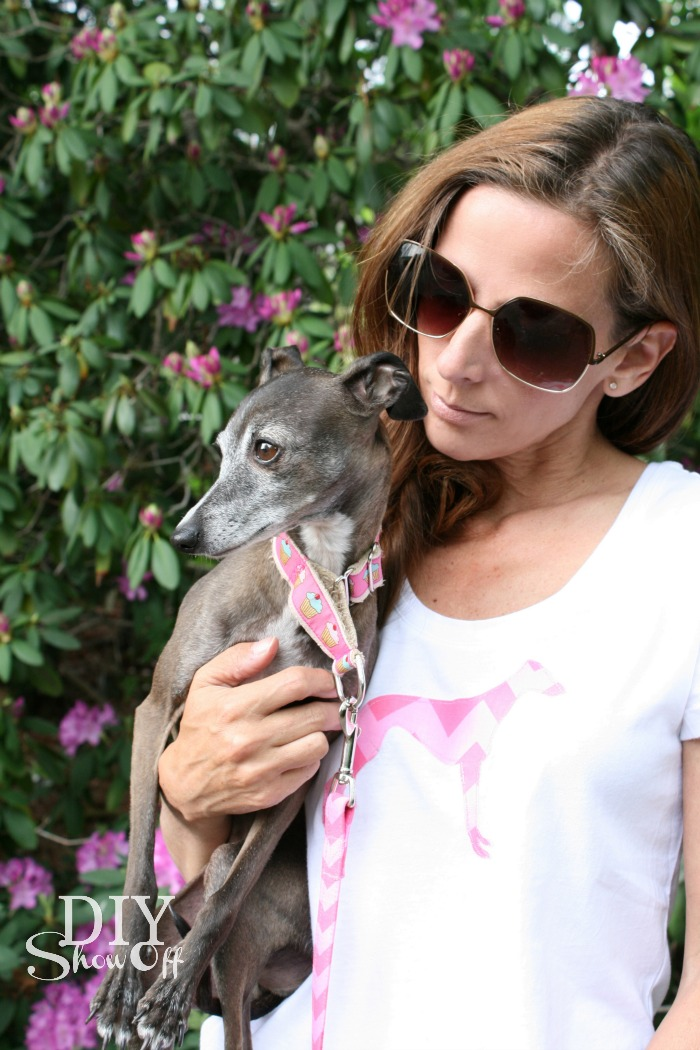Silhouette-greyhound-applique