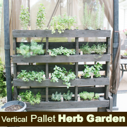 Free Standing Pallet Herb Garden Page 2 Of 2 Diy Show Off