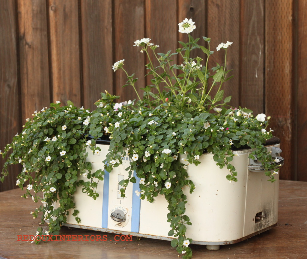 crock pot planter at Redoux