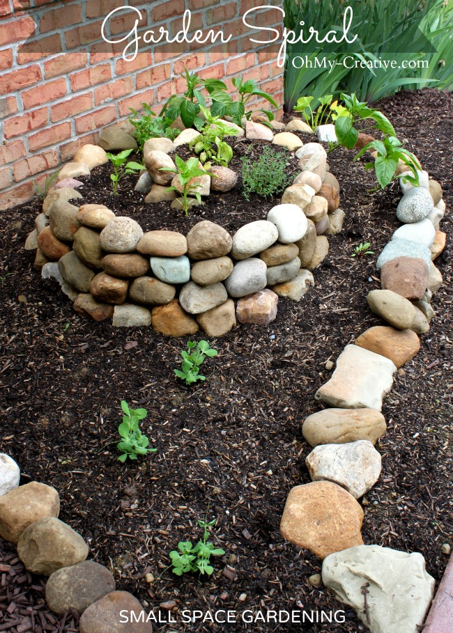 How-to-create-a-small-vegetable-garden-with-a-garden-spiral-OhMy-Creative