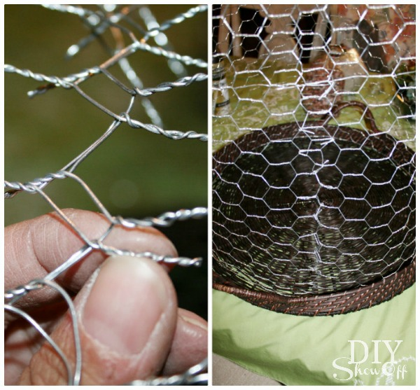 Diy Wire Cloche Succulent Garden Terrariumdiy Show Off