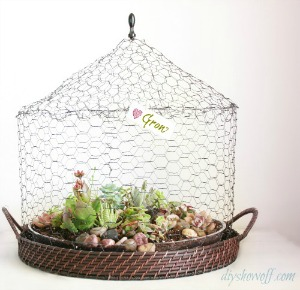 DIY wire succulent garden tutorial