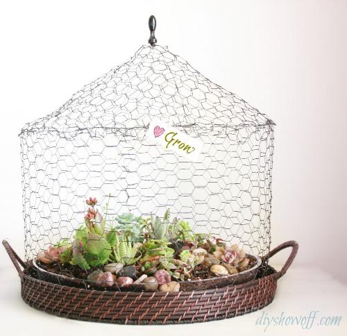 DIY wire succulent garden