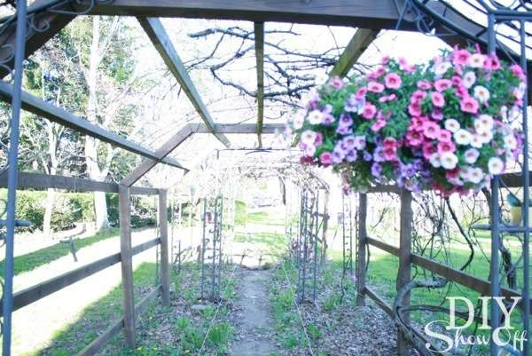 grape arbor path before