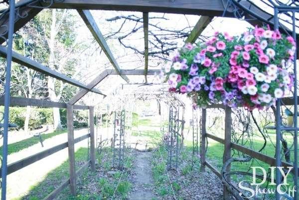 grape arbor path before