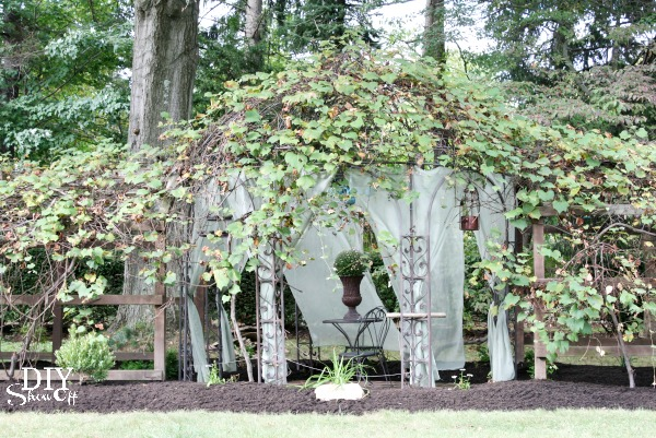 grape arbor gazebo reveal