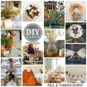 Fall and Thanksgiving DIY highlights
