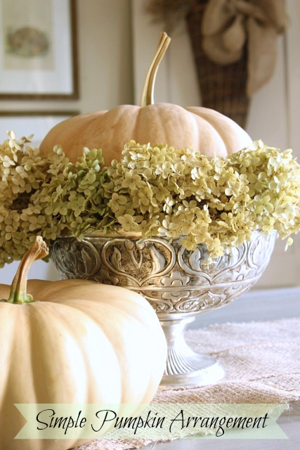 Pumpkin-hydrangea-arrangement at DaisyMaeBelle