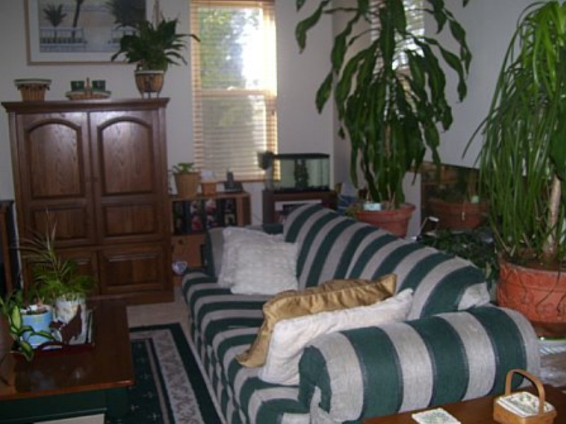 family room before makeover
