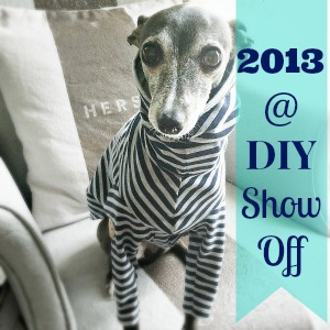 2013 DIY Recap at DIYShowOff