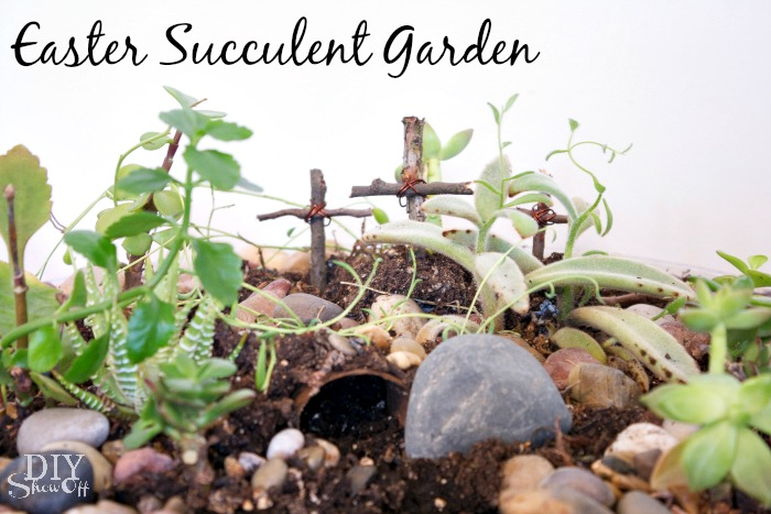 Easter succulent garden at diyshowoff.com