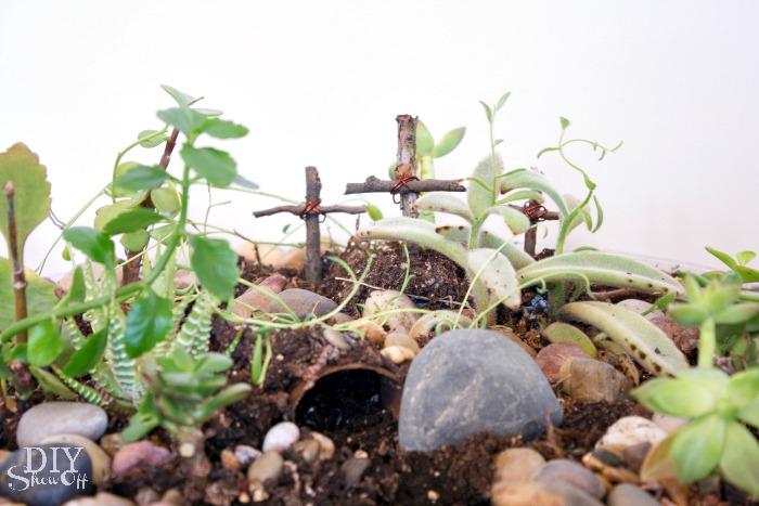 Easter succulent garden - diyshowoff.com