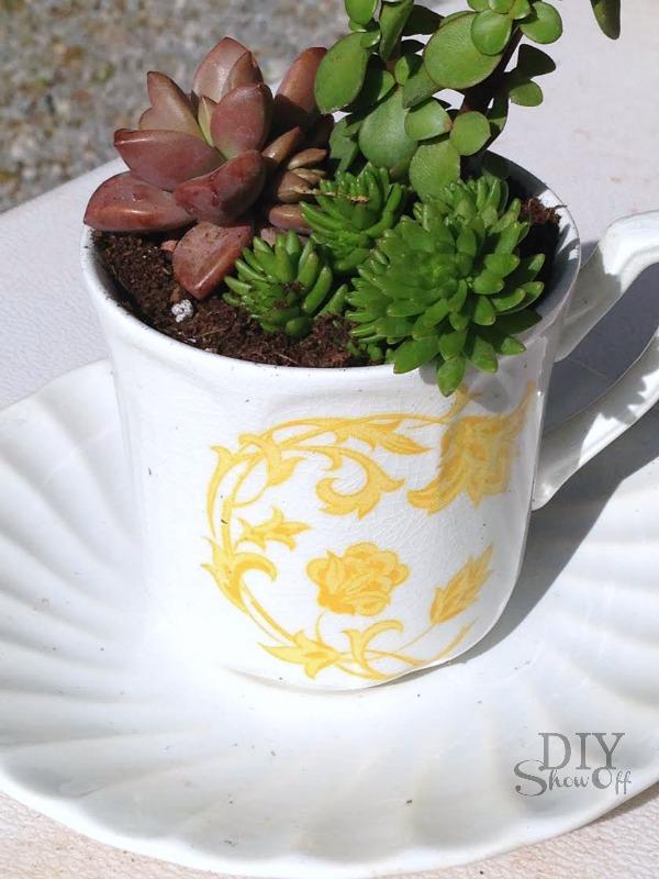 tea cup succulent planter - diyshowoff.com