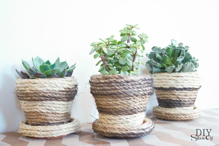 DIY succulent planter tutorial