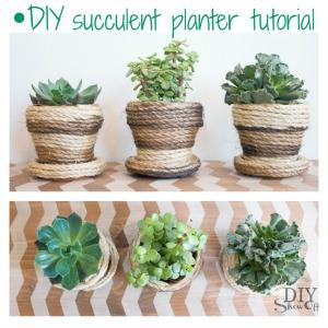 DIYShowOff sisal succulent planter tutorial