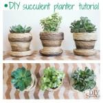 succulent planter at diyshowoff.com