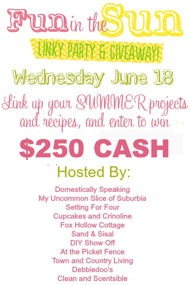 Fun in the Sun link party and giveway