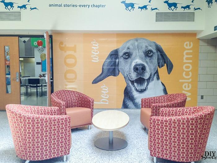 animal shelter lobby