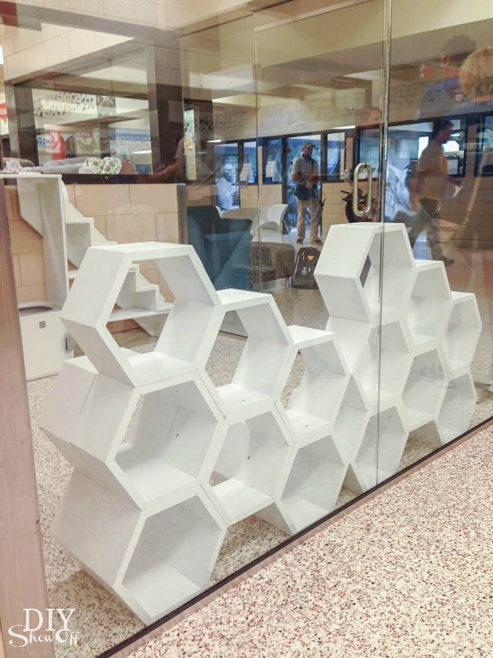 cat hexagon furniture