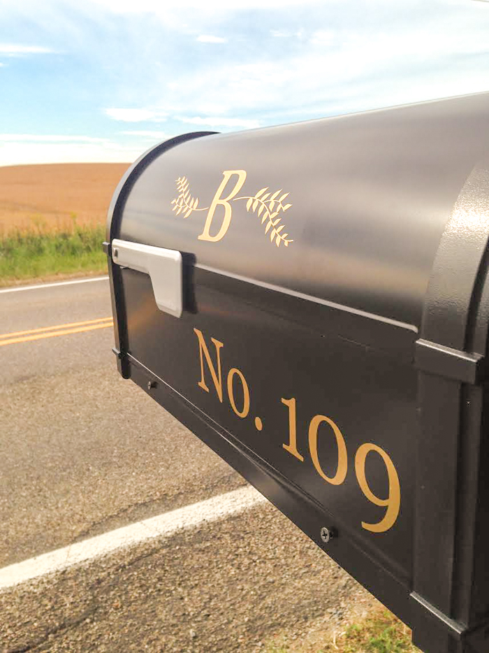 mailbox diy vinyl decals - diy show off  u2122
