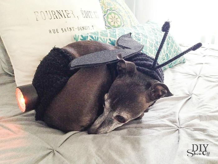 lightning bug halloween dog costume tutorial at diyshowoff #michaelsmakers