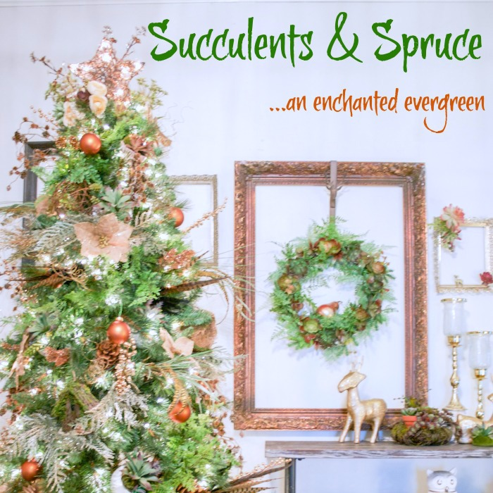 Succulents & Spruce Christmas Tree