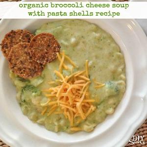 organic broccoli cheese and pasta shells soup recipe diyshowoff