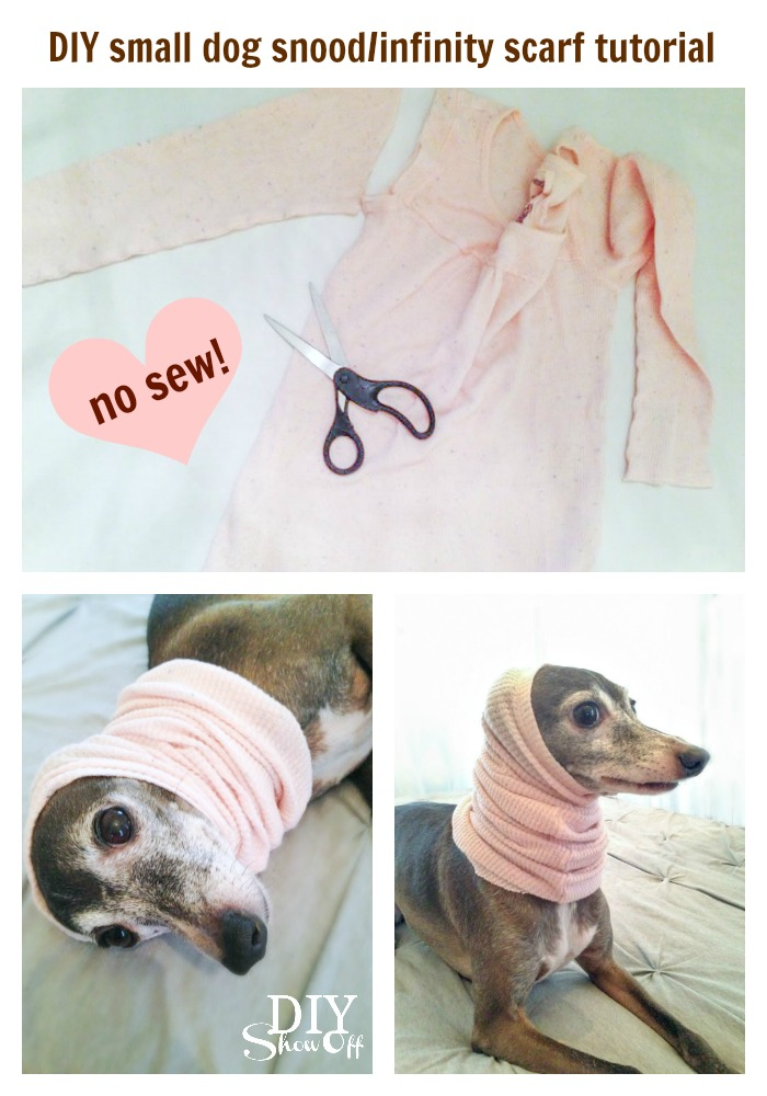 DIY small dog snood/infinity scarf tutorial (no sew) @diyshowoff