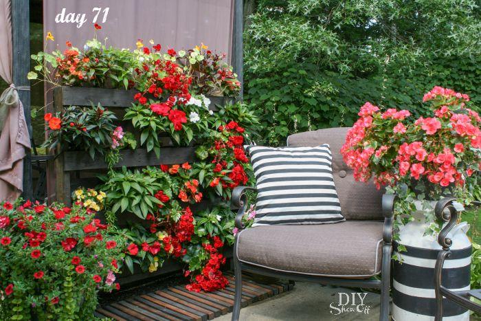 flower pallet garden @diyshowoff