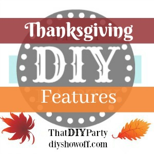 That DIY Party Thanksgiving