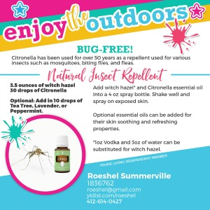 diyshowoff-Outdoors-Citronella
