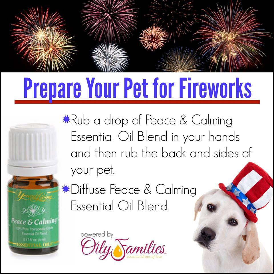 calming essental oils for pets during fireworks and thunderstorms