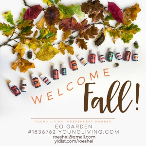 diyshowoff welcome-fall-graphic