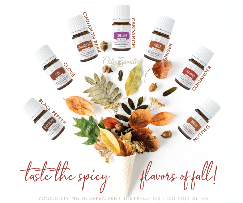 Spices-of-Fall