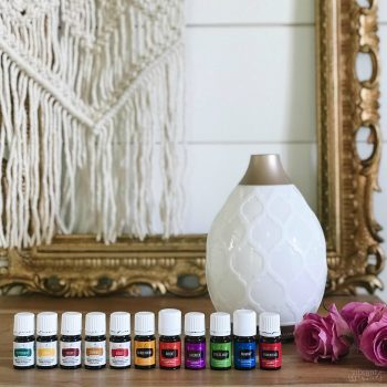diyshowoff young living essential oils premium starter kit
