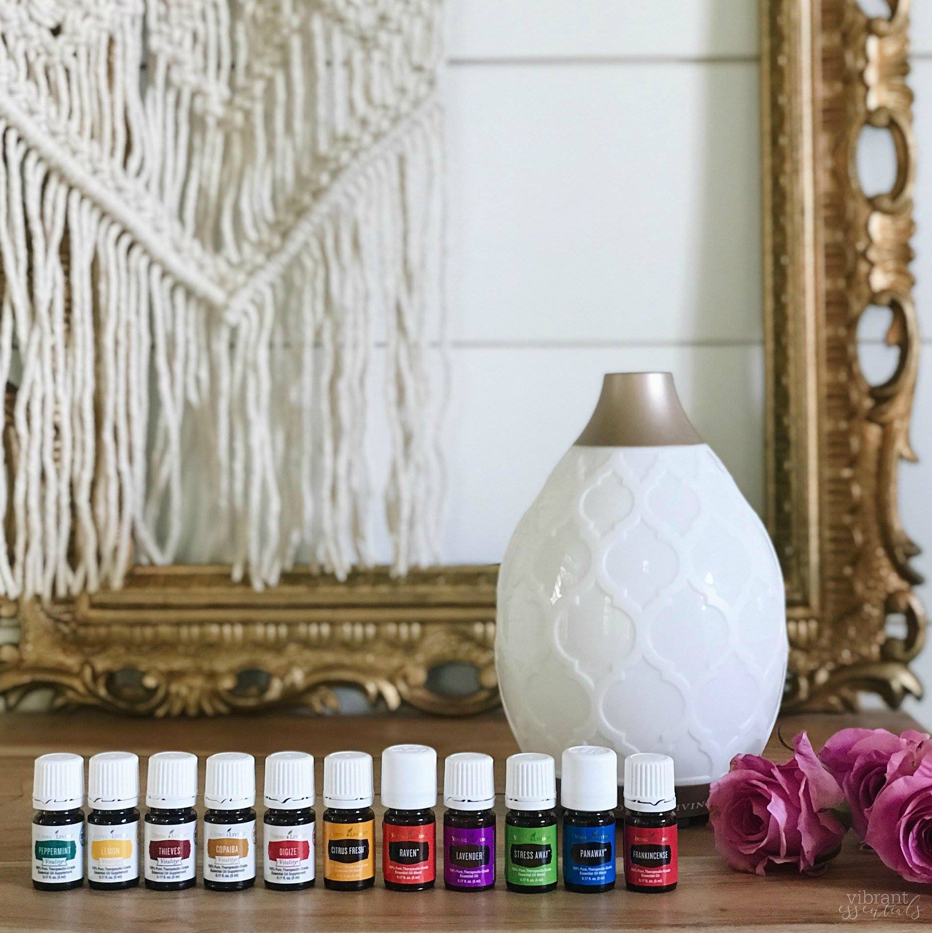 diyshowoff young living essential oils premium starter kit
