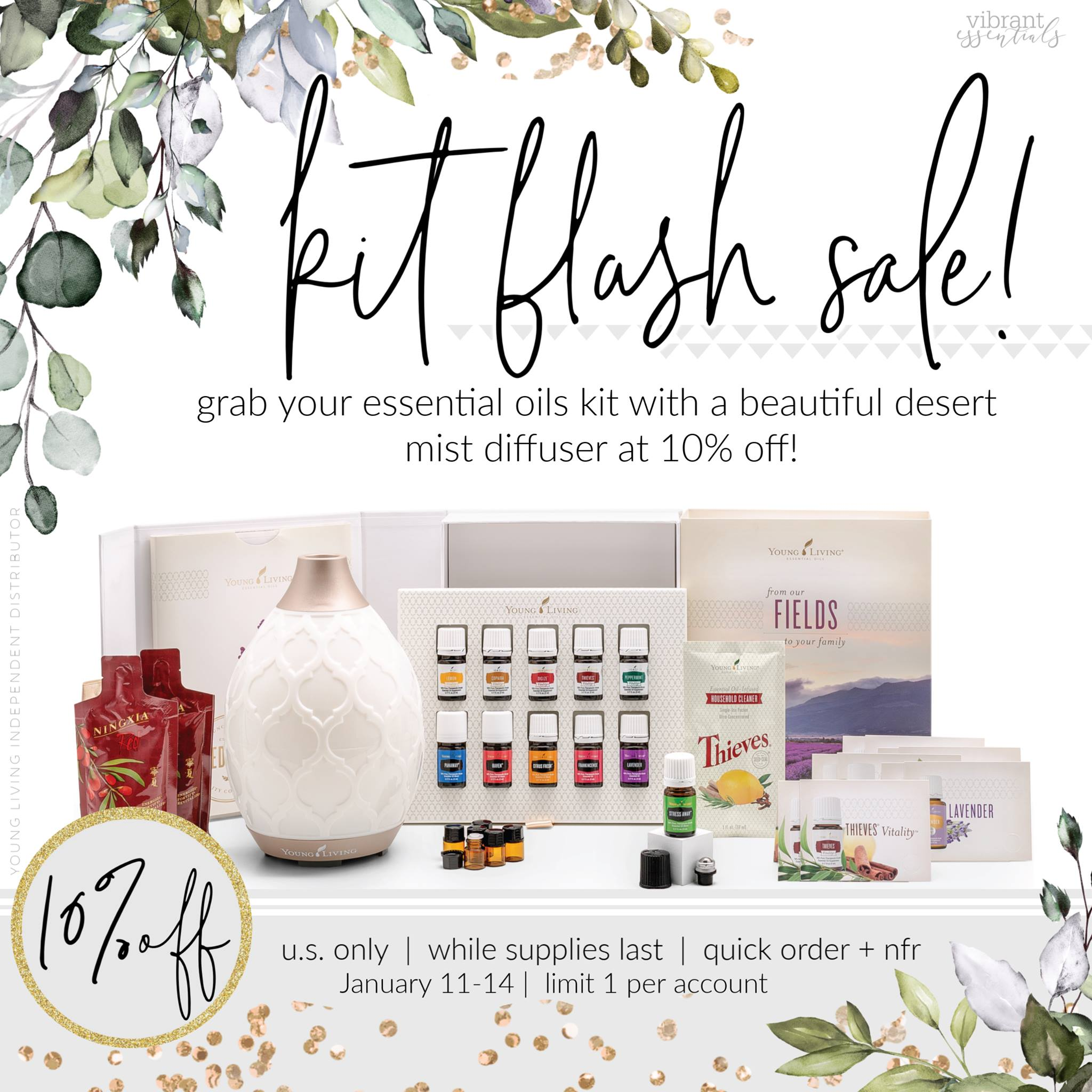 flash kit sale