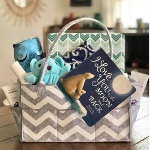 baby boy young living seedlings blue bear gift basket