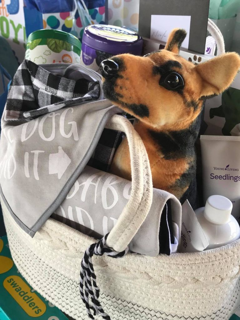 german shepherd baby gift basket