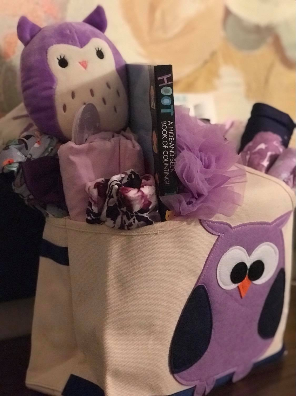 owl baby shower gift basket