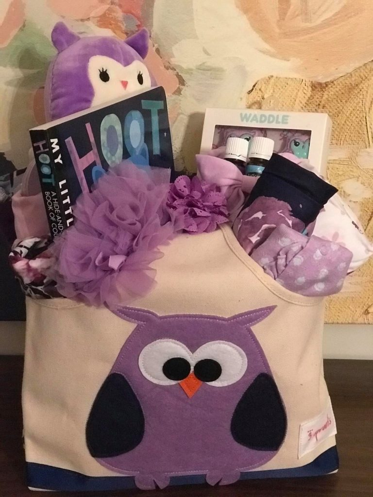 purple owl baby girl gift basket